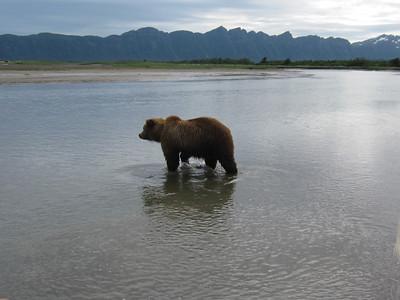 Alaska Trip 2011