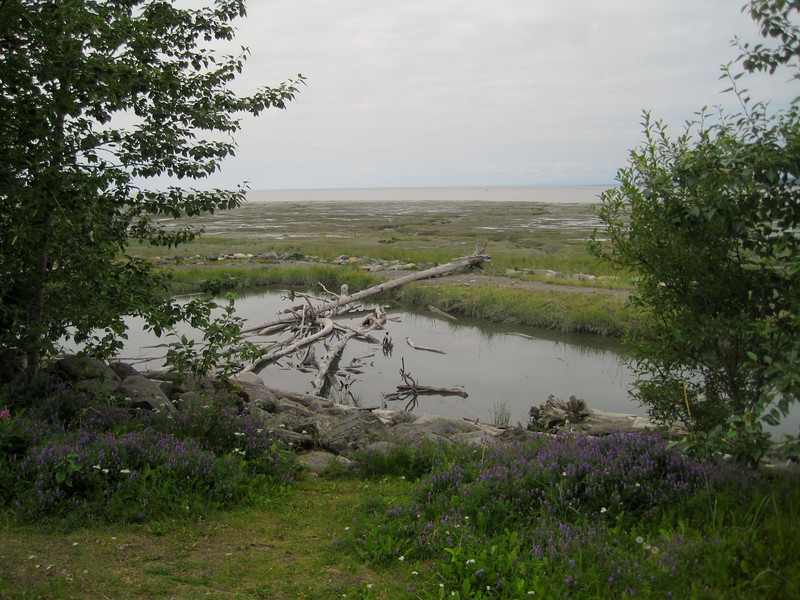 Sights from the Tony Knowles Coastal Trail that leads southwest from Anchorage along the water.