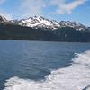 Kenai Fjord's boat excursion beginning.