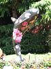 2007-07-05-114156-s2is-1677