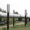 The Trans-Alaskan pipeline