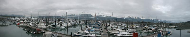 The harbor at Seward
