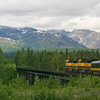 The view from the observation deck of our train on the way to Fairbanks
