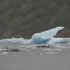 Ice chunk off the Mendenhall Glacier.  I love how it's blue.