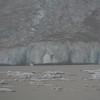 Mendenhall ice.
