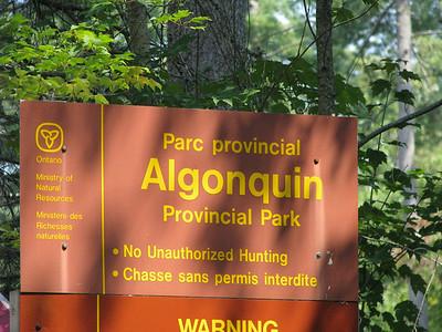 Algonquin Canoe Trip