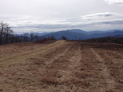 Appalachian Trail Tennessee March 2015