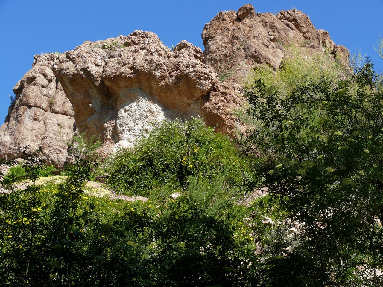 Yellow Flowers Desert Rocks