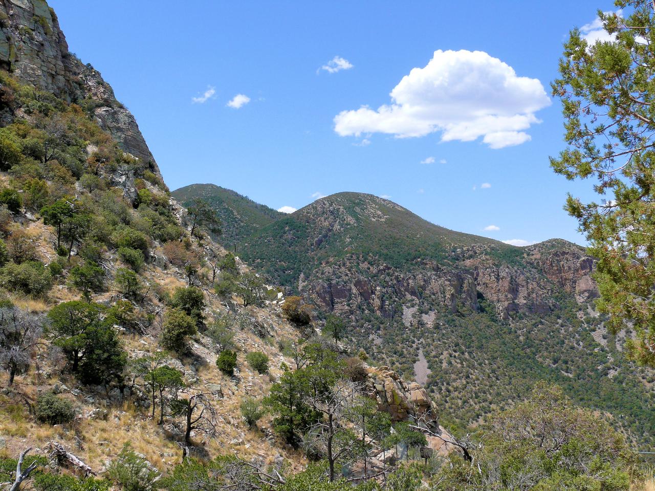 Carr Canyon Mountain View