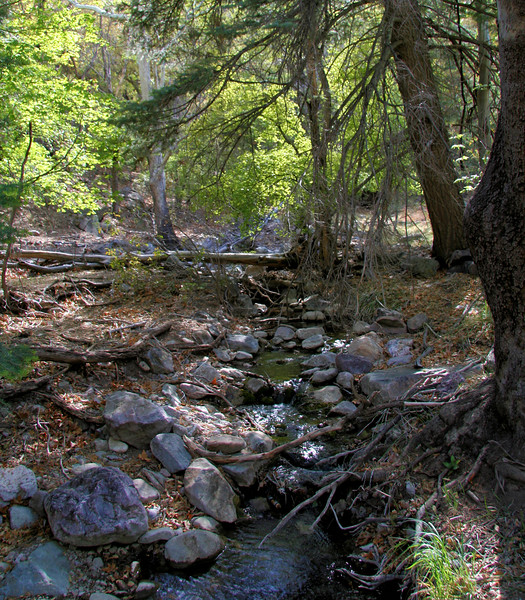 The Great Ramsey River
