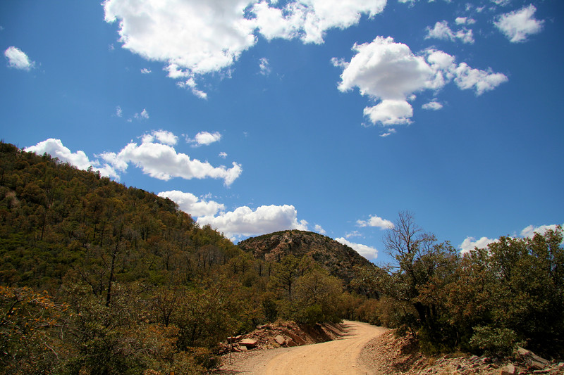 Carr Canyon Rd