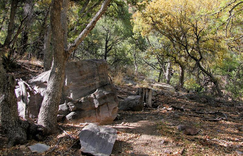 Ramsey Canyon Rock