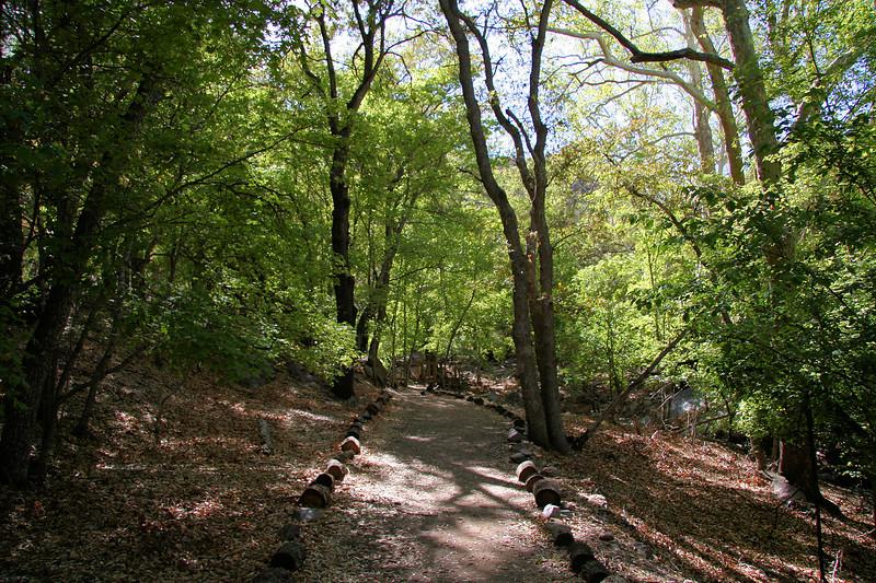 Ramsy Canyon Trail