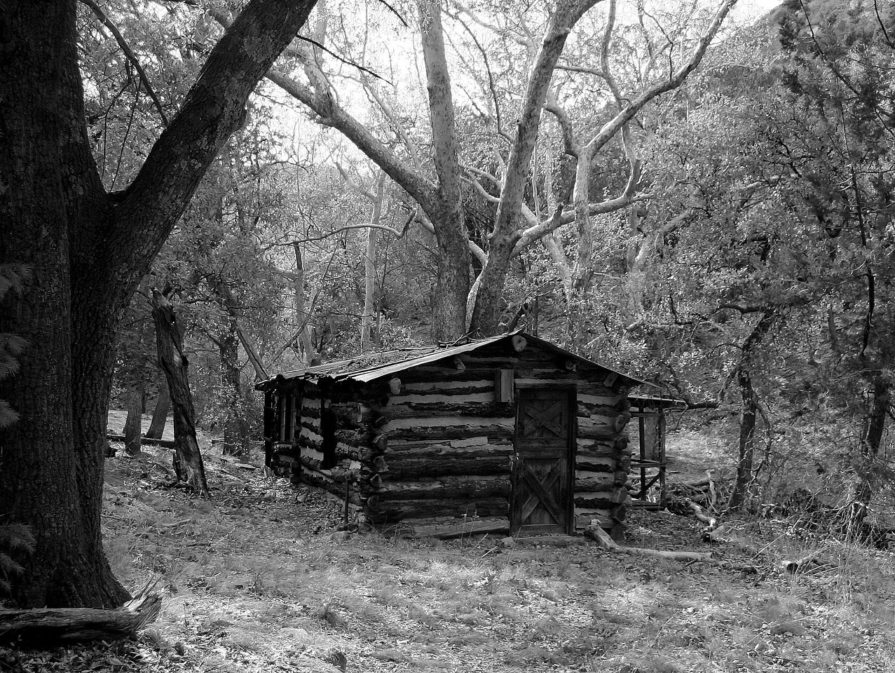 Log Cabin BW