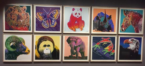Andy Warhol's Nature Exhibit @ Crystal Bridges Museum