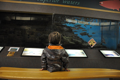 Watching the fish at the Fish Hatchery