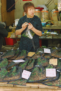 Grasshoppers for Sale - Po Street, Kowloon