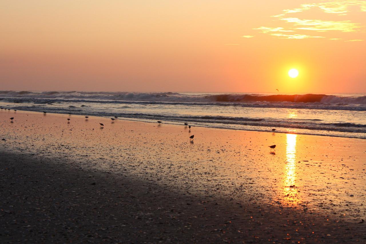 Avalon New Jersey Sunrise