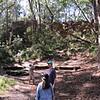Panoramic view of hiking in Australia