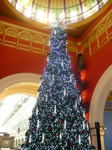 Day 3: Queen Victoria Building (QVB) - 4-story tree