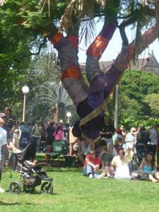 Day 8: Sydney Festival