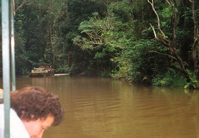 Boat trip into Tropical Rain Forest