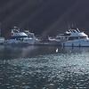 crowded dock-prevost hbr