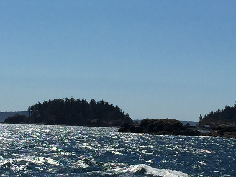 choppy seas as we leave Departure Bay and head North