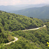 Blue Ridge Parkway, vegetation management had been a key component in the parkway's design - of necessity, since construction had scarred the road corridor and much of the farm and forestland beyond it had been denuded by logging and eroded by poor farming practices.