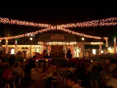 Nice decorations, it's an island Christmas!!