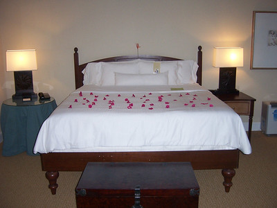 We stayed at the Westin Lucaya resort on Grand Bahama Island.  We have never had flower petals all over the bed before (good start to the vacation, huh?)