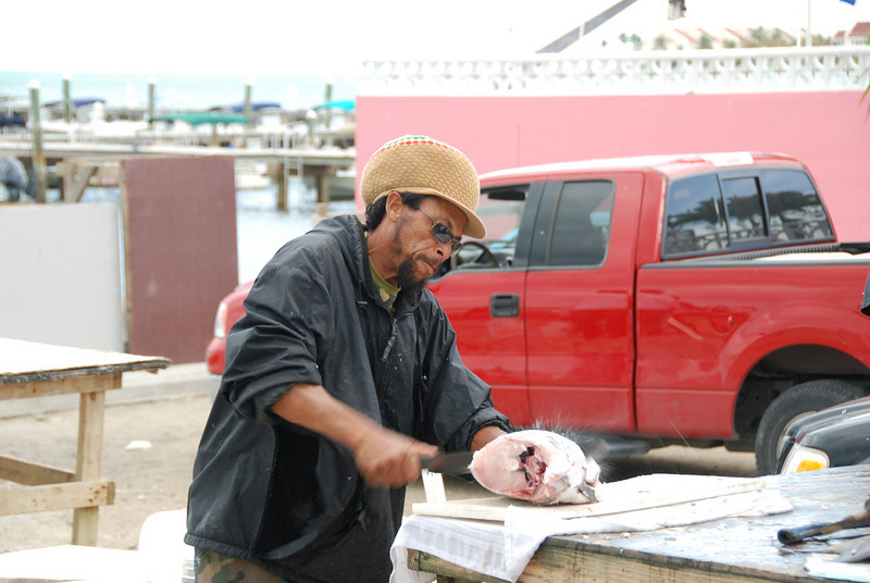 Cutting grouper