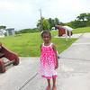 Day 3 - Bahamas Taxi tour