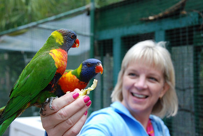 Me feeding the parrots. This is my favorite picture that Jeremy took.