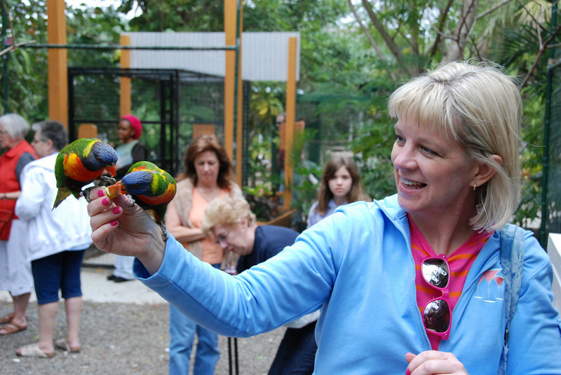 Me feeding the parrots, as photographed by Jeremy.