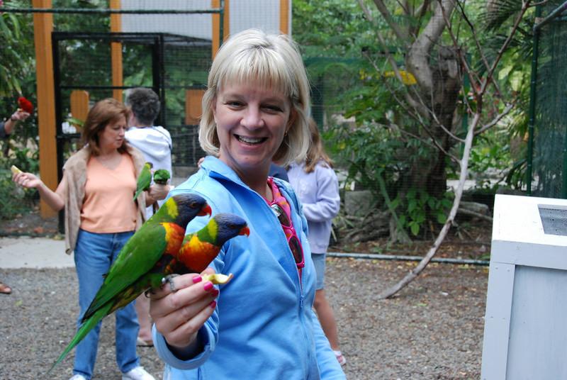 Me feeding the parrots