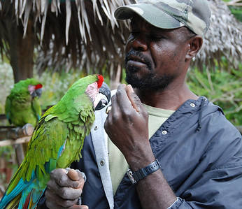 The parrot keeper.