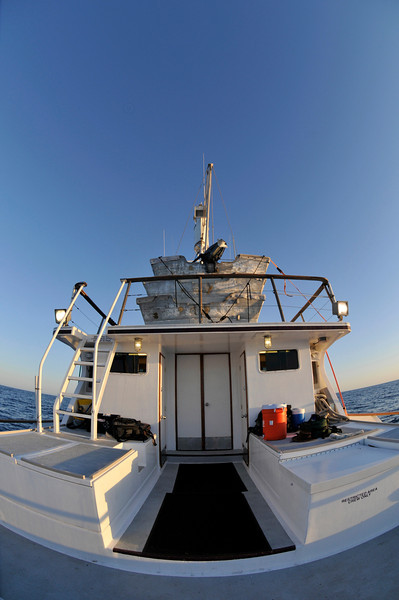Searcher - with the Fisheye lens