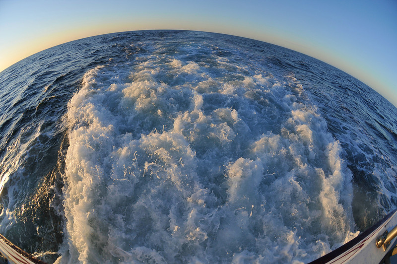 Fisheye lens snapshot off the back of the boat.