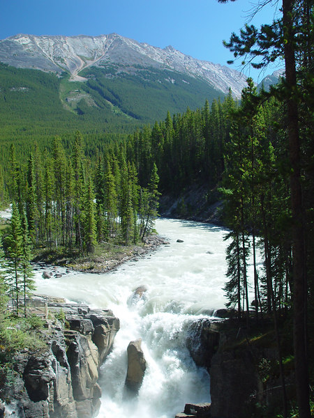 Sunwapta falls on the Icefields Parkway