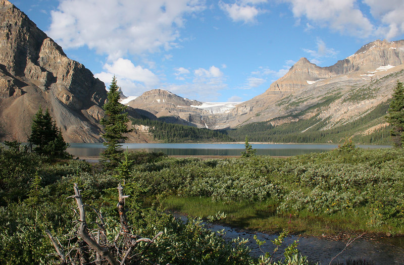 Bow Lake was very picturesque