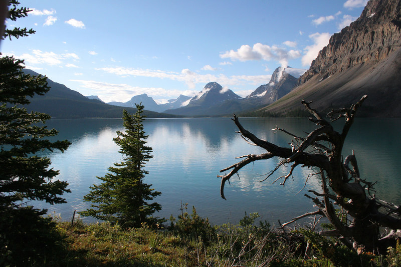 Bow Lake was very tranquil
