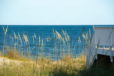 Beach 2014