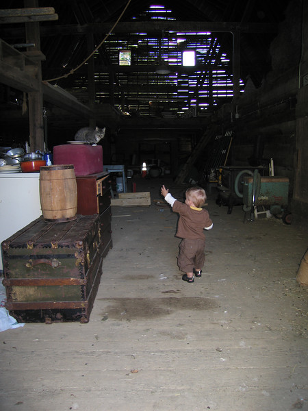 Owen inside the Pies, Pies, Pies barn