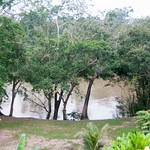 Belize 161114 Tikal Trip
