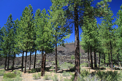 Bend vacation  0470