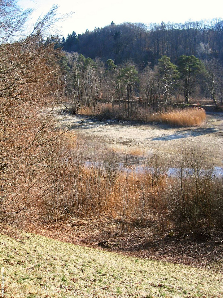 The Aare dry and empty