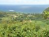 DSCN5169-RoadToHanaWailua