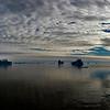 Greenland Iceberg Panorama