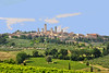 Village of San Gimignano - a miedieval town set at the top of a hill for defensive reasons.It is surrounded by olive trees and grape vineyards.